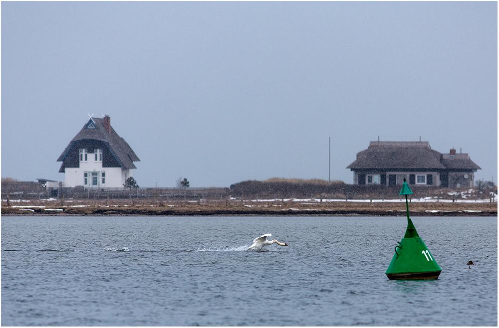 Eine kleine Bootstour..