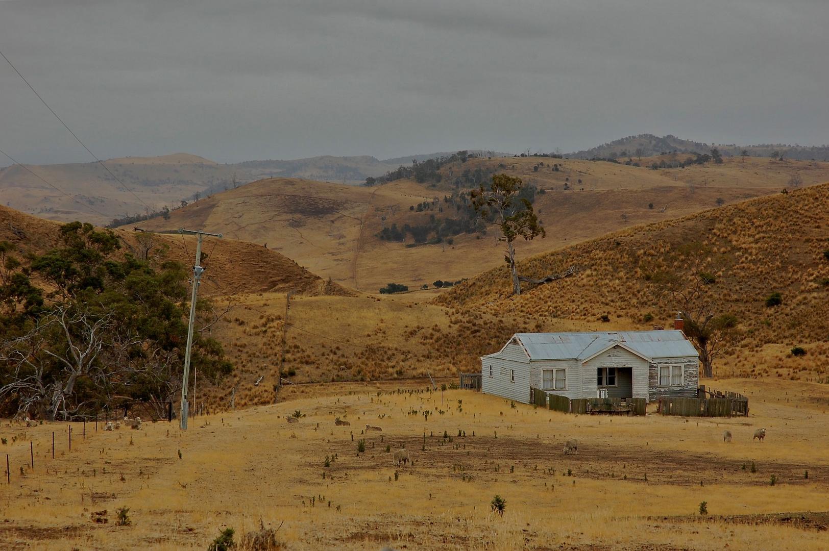 eine kleine Farm in Tasmanien