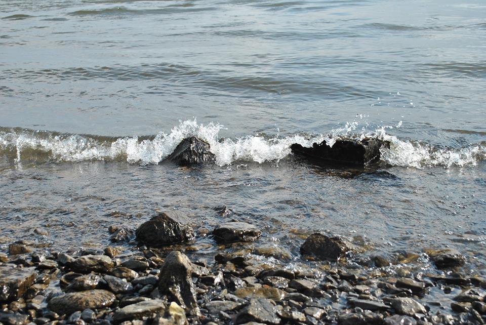 Eine kleine Welle am Rhein