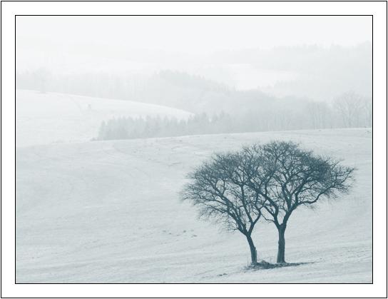 Eine Landschaft ...