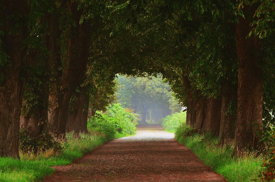 Eine Landstraße
