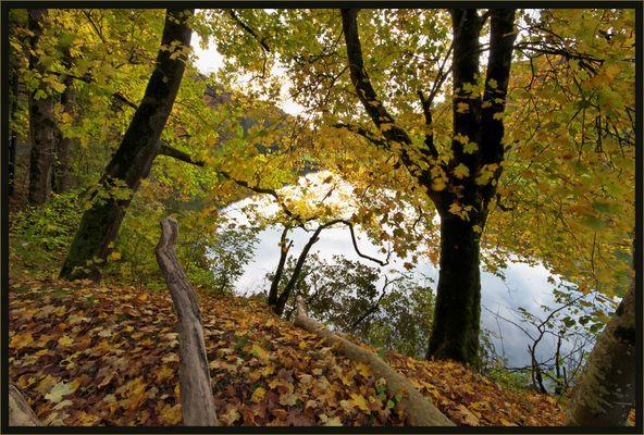 Eine leichte Herbstbrise ...