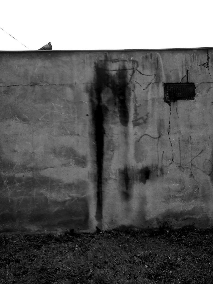 Eine Mauer (2)