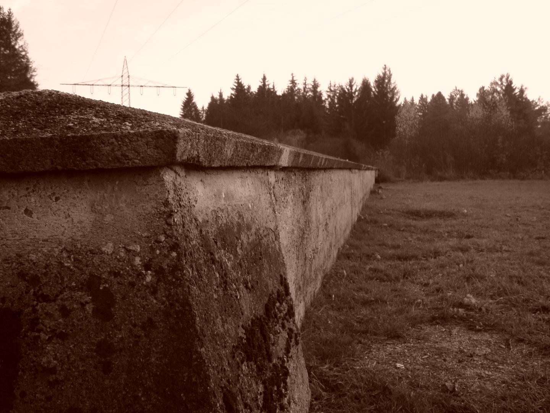 Eine Mauer im Wald