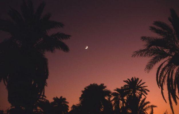 """Eine Nacht in der Oase """"Queled Said"""" bei Timimoun"""