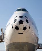 Eine Nase für die WM 1