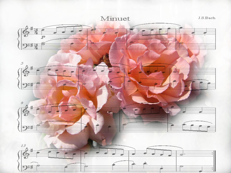 Eine Ode an die Schöne
