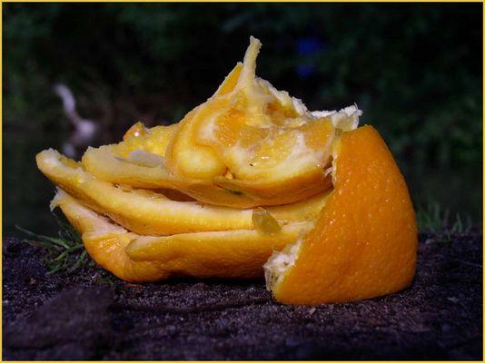 eine orange...leer