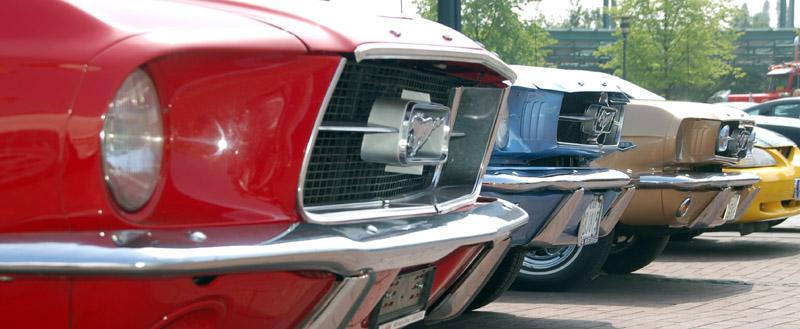 Eine Reihe Mustang