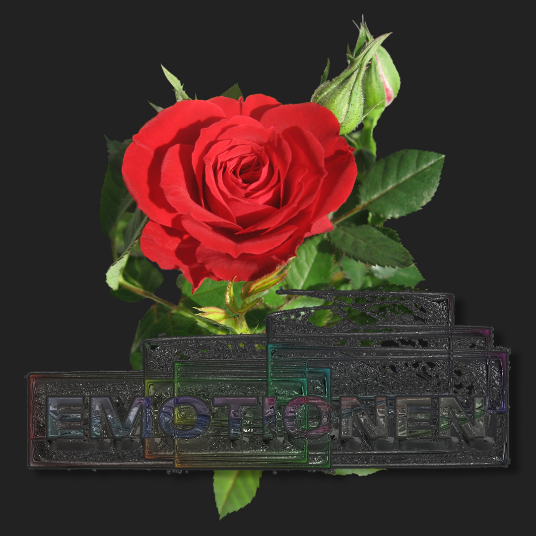 eine Rose für Dich - gefühlvoller Emotionen