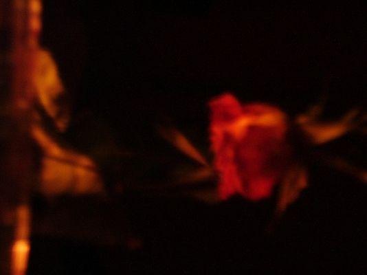 eine rose im dunklen zimmer neben einer kerze in einem roten teelichtglas