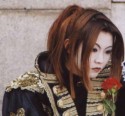 Eine Rose in Japan