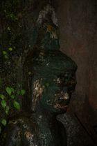 eine uralte erleuchtung mitten im dschungel, laos 2010