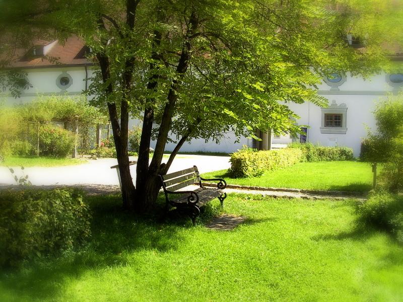 Eine verträumte Bank im Kräutergarten vom Kloster in Benediktbeuern...