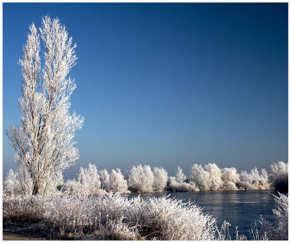 eine weihnachtslandschaft foto bild jahreszeiten winter natur bilder auf. Black Bedroom Furniture Sets. Home Design Ideas