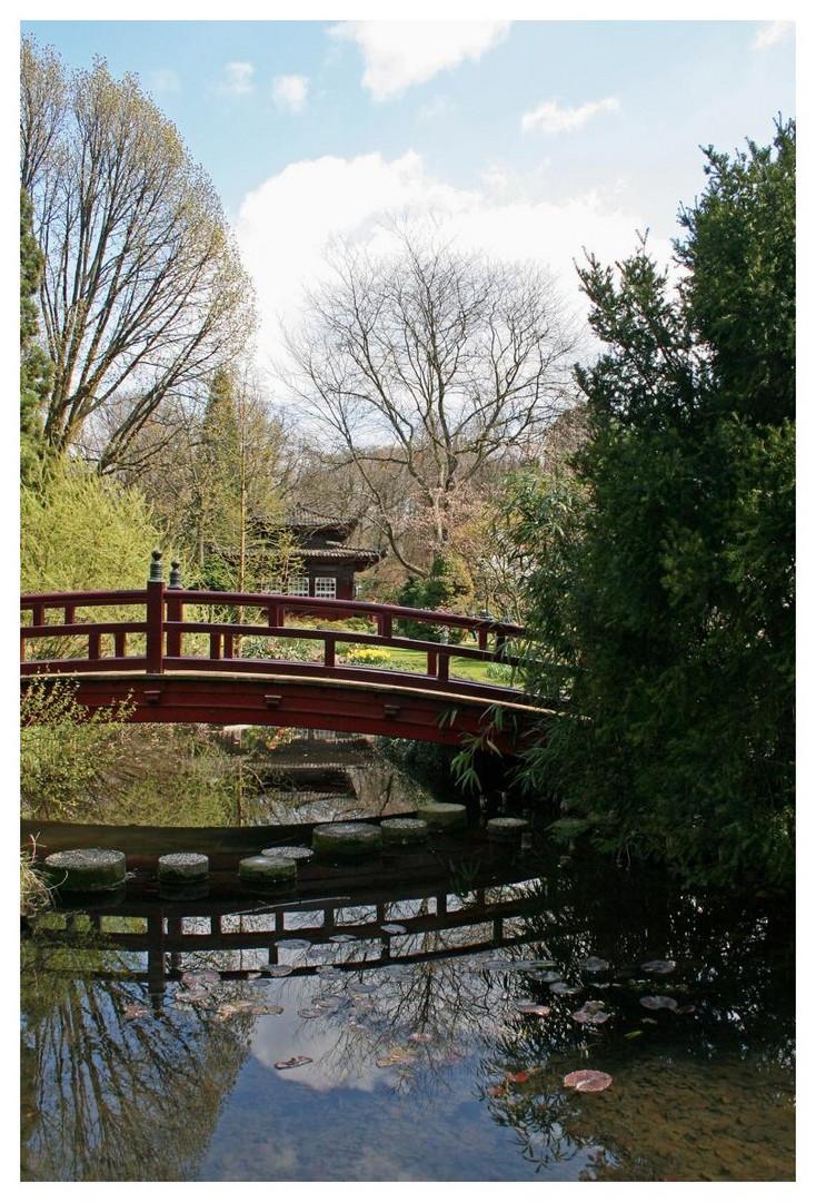 eine weitere kleine Brücke im japanischen Garten in Leverkusen