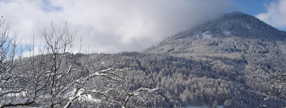 Eine Wintertagswahrheit
