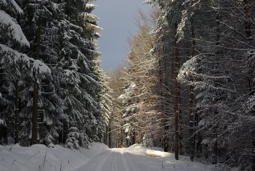 Eine Winterwanderung...