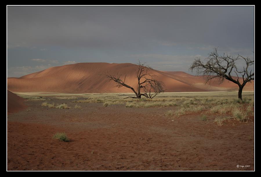 Eine wunderbare Landschaft in Namibia
