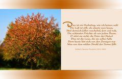Einen Goldenen Oktobertag...