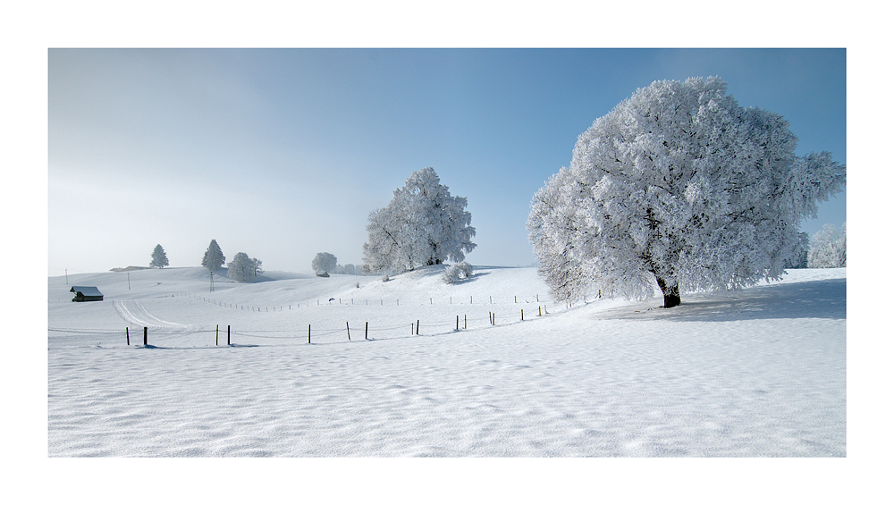 Einen Guten Rutsch ins Neue Jahr 2012...