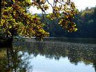 Einen schönen Herbsttag
