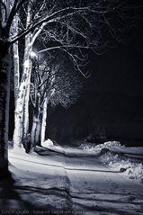 Einer Seele Einsamkeit