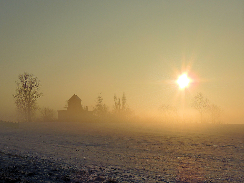 eines Morgens