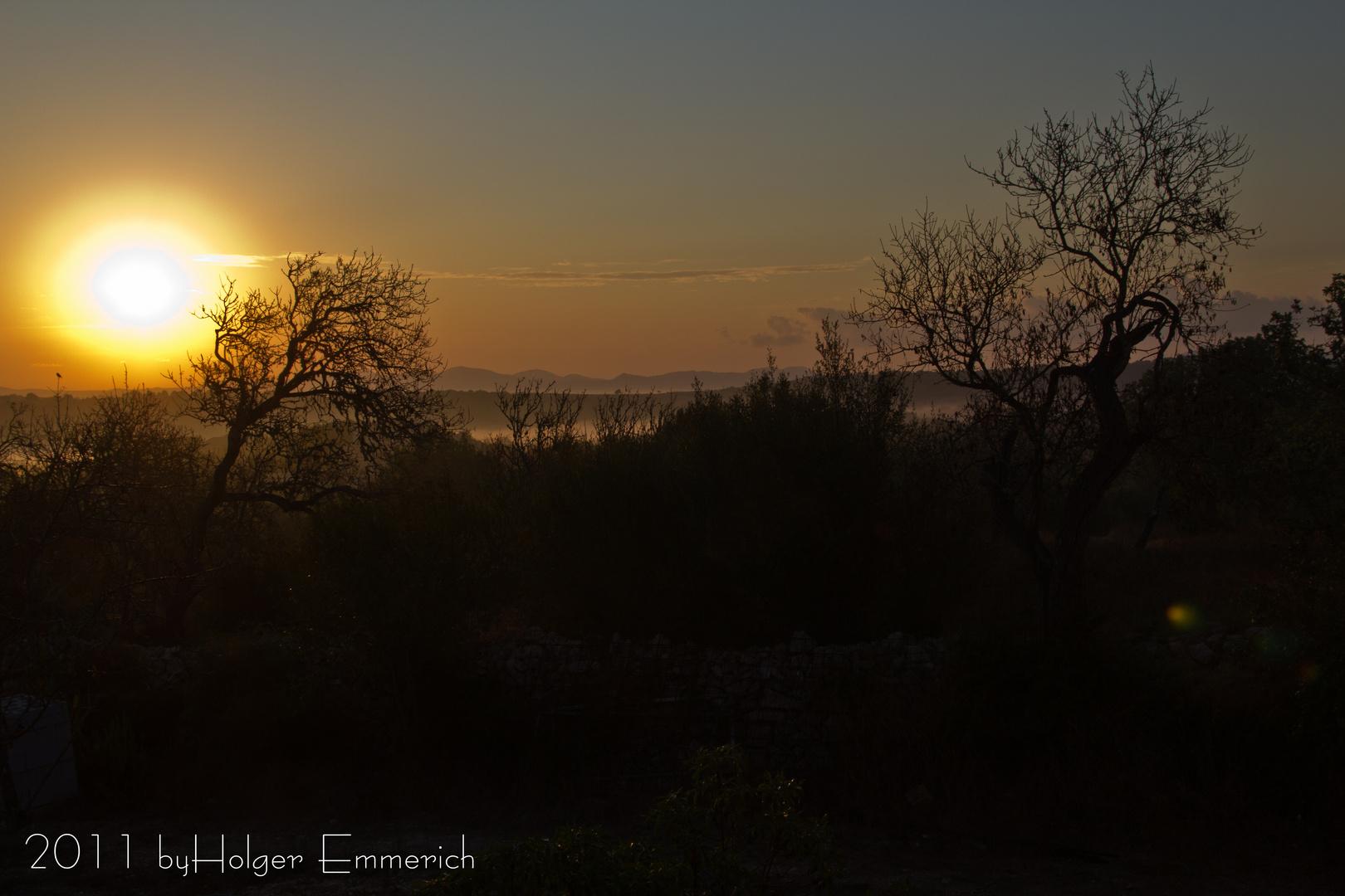 Eines Morgens auf Mallorca 1