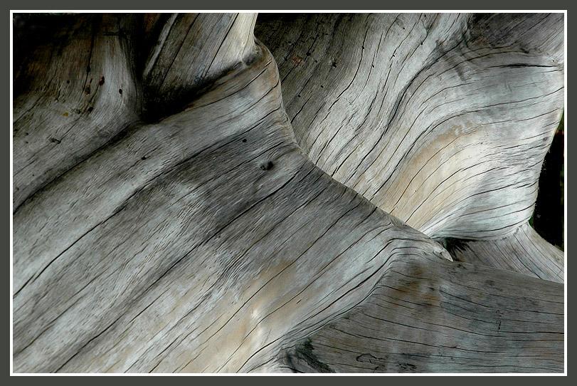 Einfach Holz