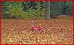 Einfach im Blätterwald zurück gelassen von Marliese B.