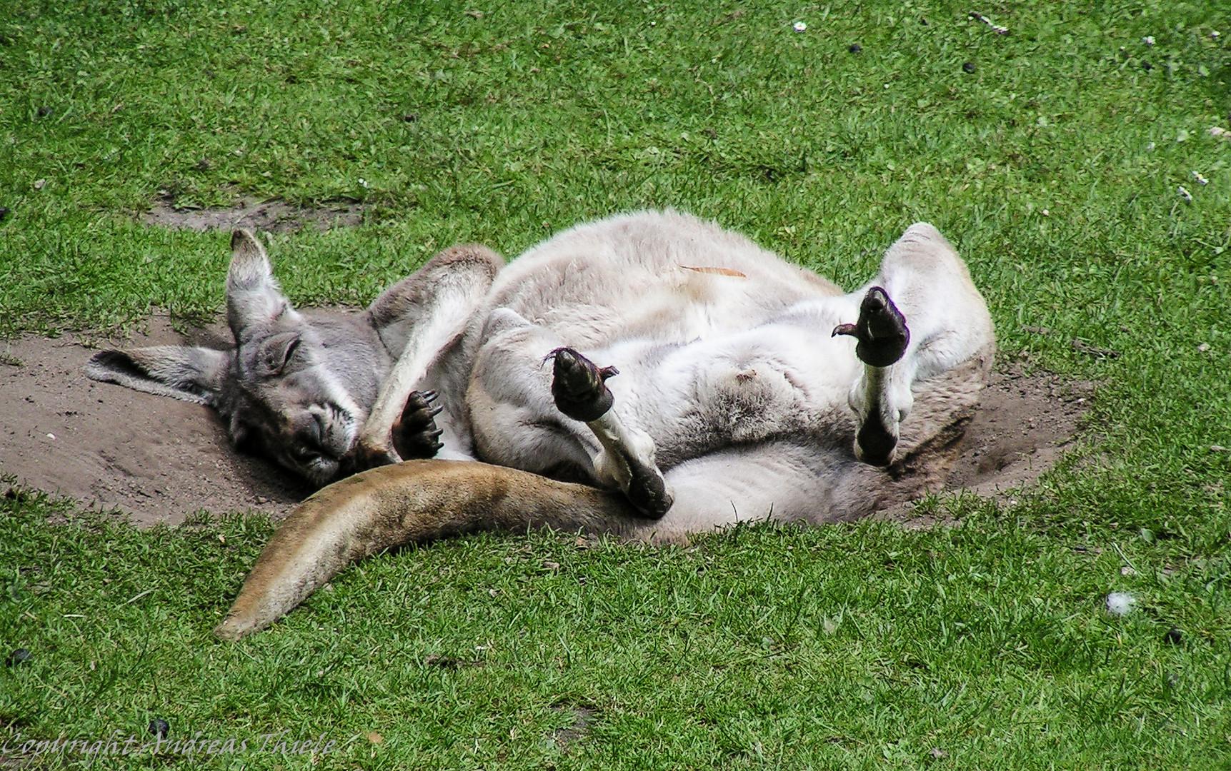 Einfach mal zum Wochenende relaxen!