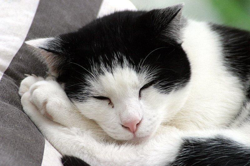 einfach müde
