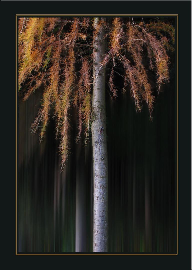 Einfach nur ein Baum