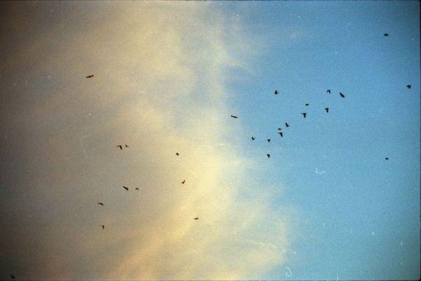 . einfach nur fliegen