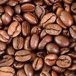 Einfach nur Kaffeebohnen...