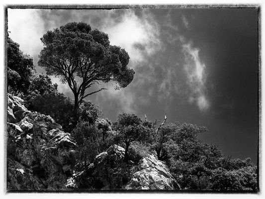 ... einfach nur Schwarz/Weiss und Landschaft ...