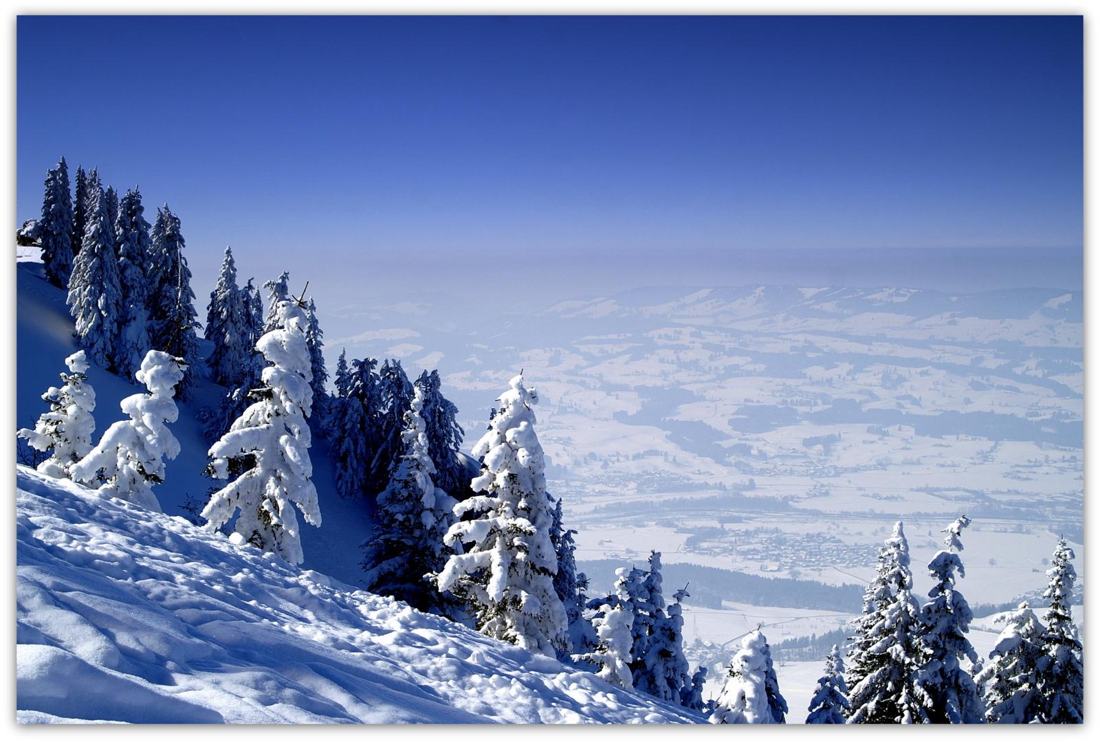 Einfach nur Winter 2