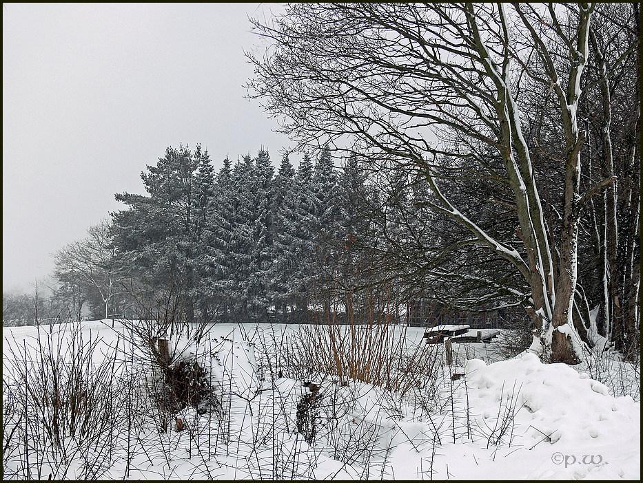 Einfach nur Winter