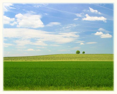 einfache Landschaft