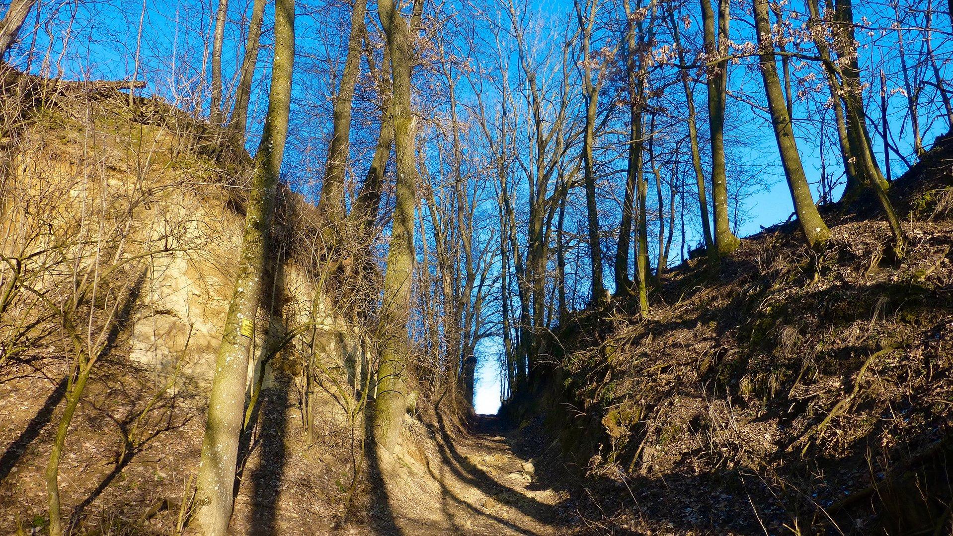 Eingang in die Natur