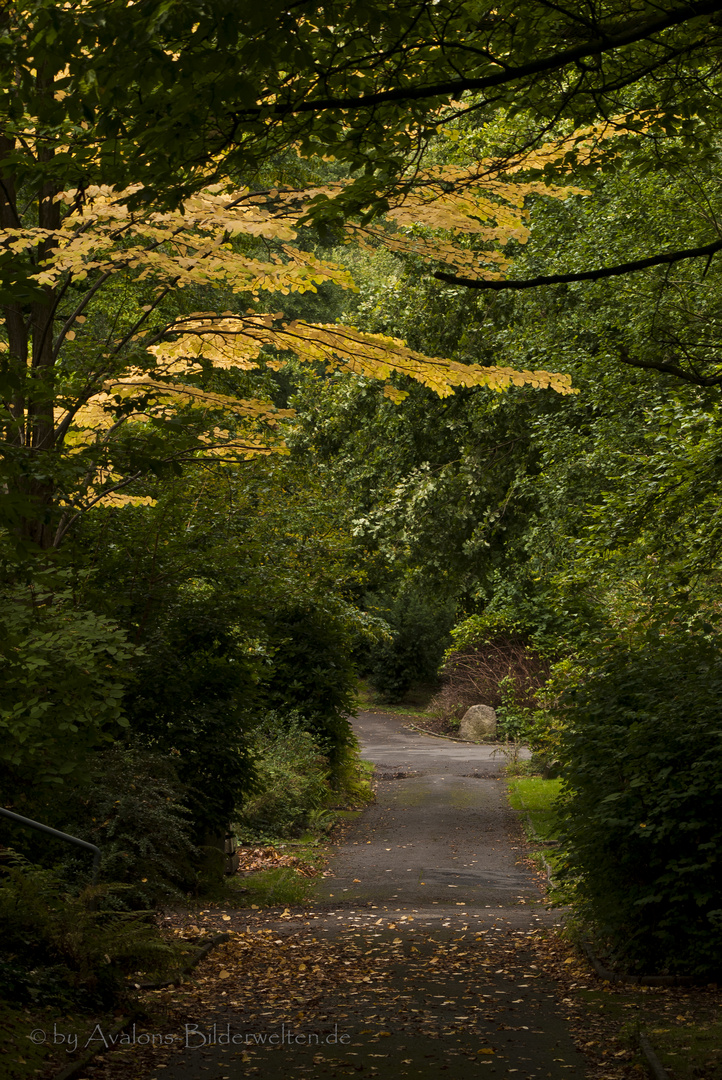 Eingang in eine ferne Welt - Hauptfriedhof Dortmund I