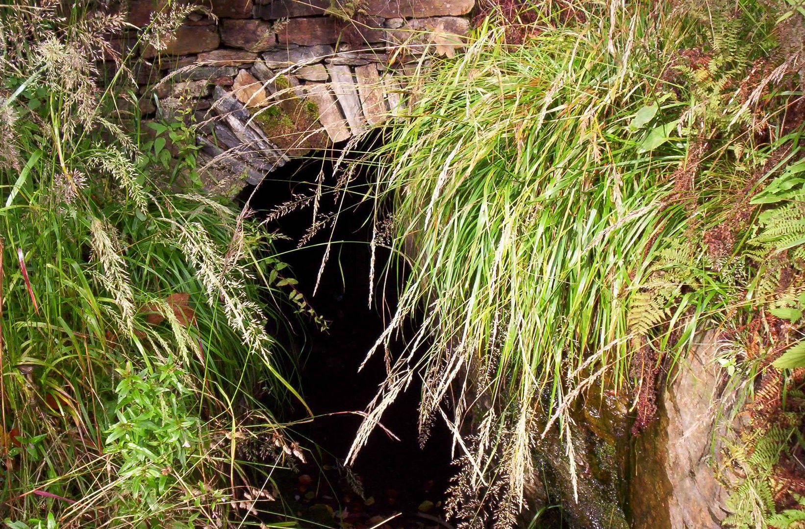 Eingang zu einem längst vergessenem unterirdischen Gang