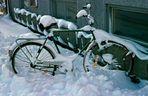 Eingefroren - Infrusen - Frozen in