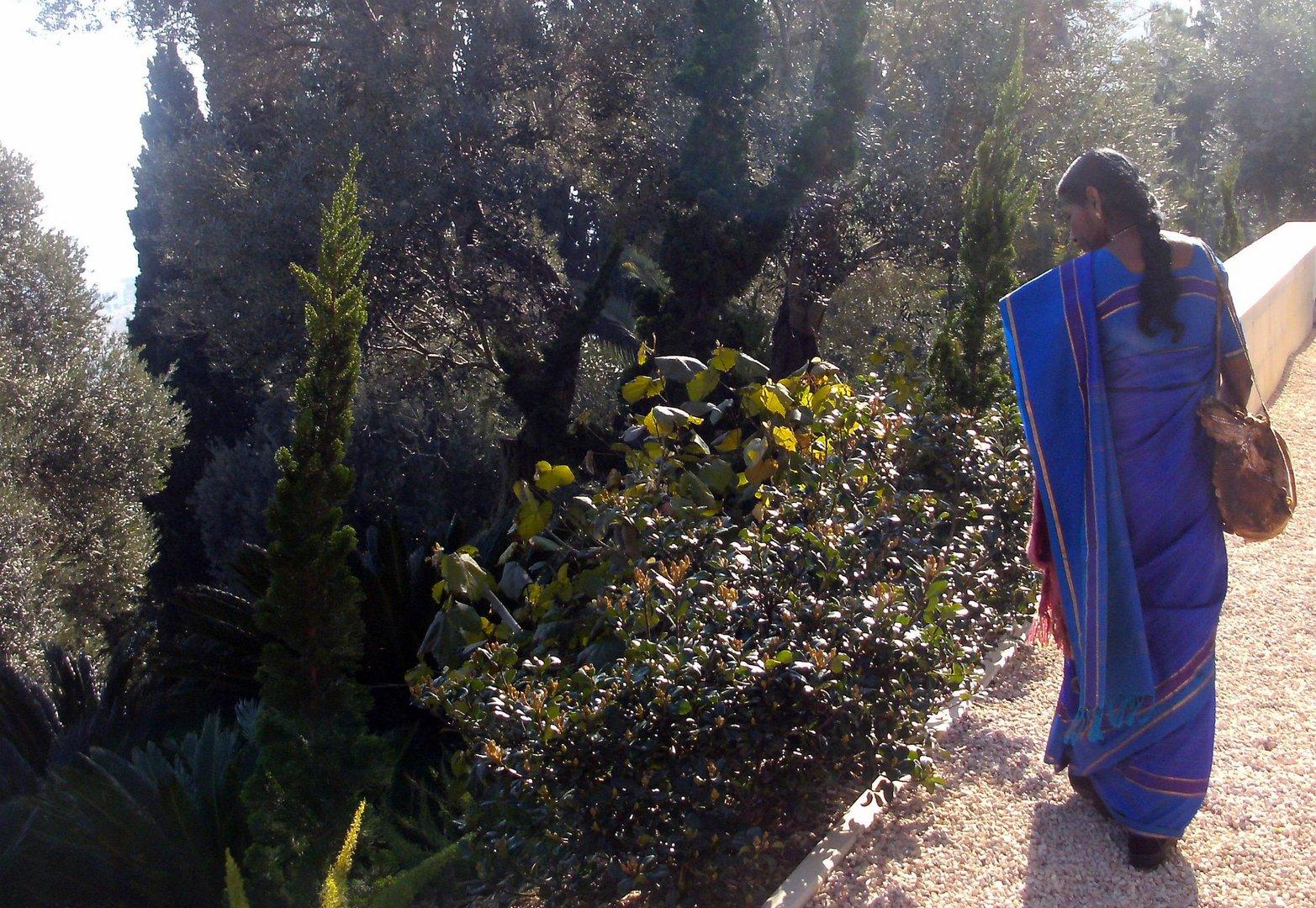 EINHEIT IN DER VIELFALT: Mensch und Natur als Meditation - weltweit möglich!