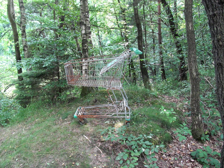 Einkauf`s  - Möglichkeit im Wald Westerberg ???