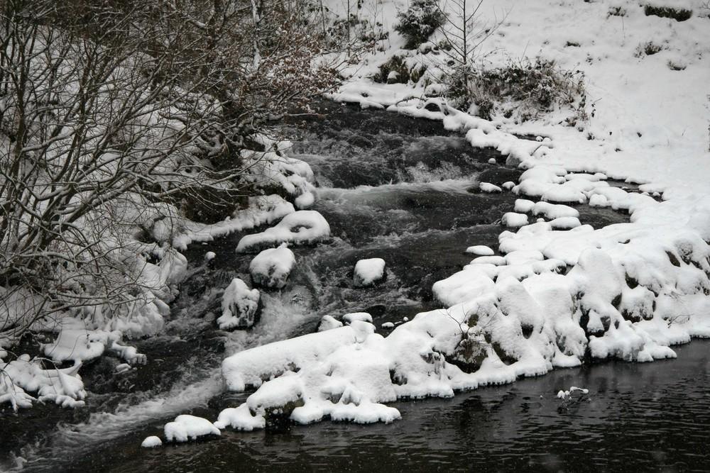 Einlauf der Rur in den Obersee bei Einruhr
