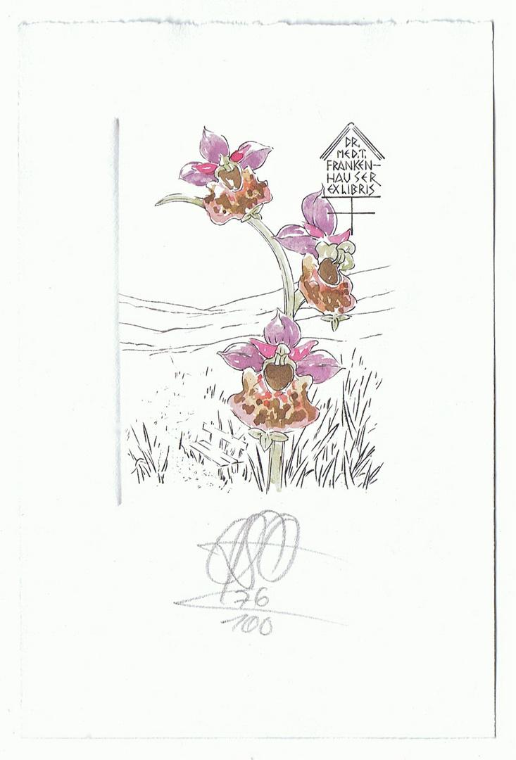 Eins meiner schönsten Exlibris: Orchidee von Oskar Roland Schrott, Selb, 1996