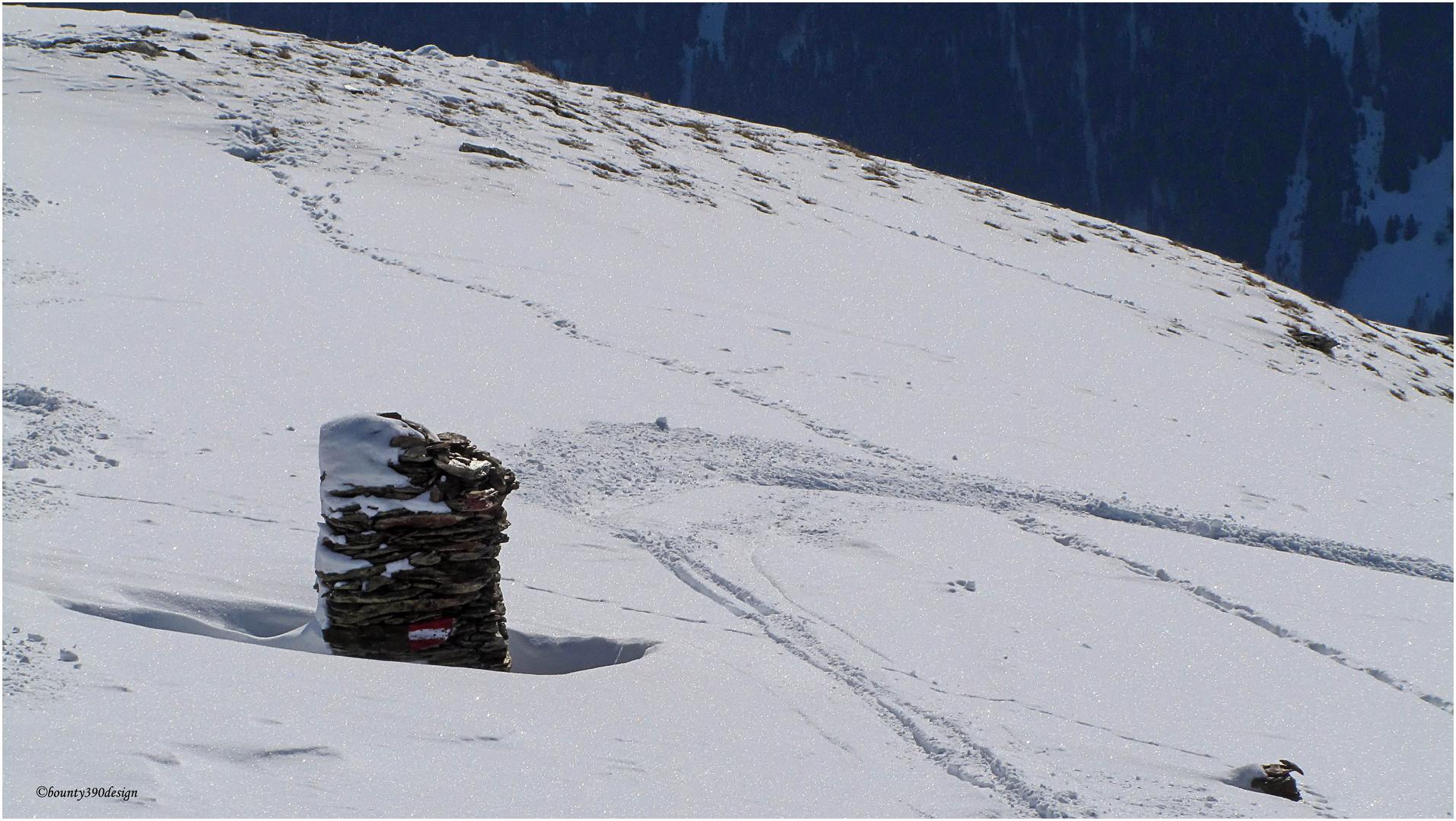 Einsam am abgeblasenen Bergrücken