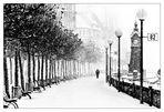 Einsam im Schnee
